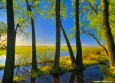 meadow_gold_web thumbnail